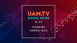 Good News - N.23 - Piumini senza oca