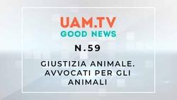Good News - N.59 - Giustizia Animale - Avvocati per gli animali