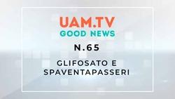 Good News - N.65 - Glifosato e spaventapasseri