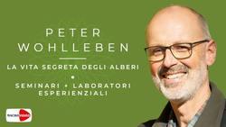 Peter Wohlleben - La vita segreta degli alberi