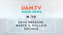 Good News - N.70 - Uova fresche - Nasce il pollaio sociale