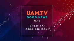 Good News - N.19 - Eredità agli animali