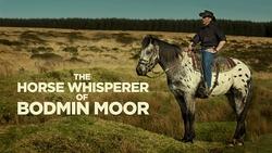 The horse whisperer of Bodmin Moor